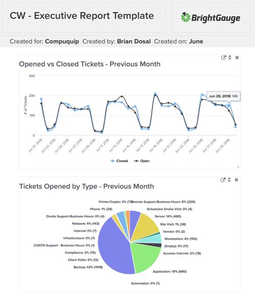 BrightGauge ConnectWise Report